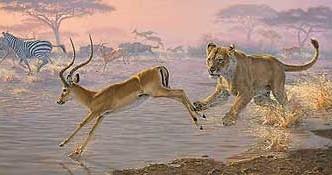 lion-chasing-antelope-art-print-pandemonium-by-lee-kromschroeder-1476610079