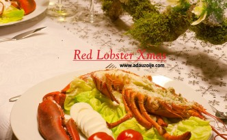 Lobster Red Xmas 1