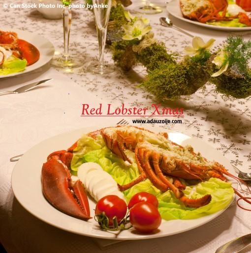 Lobster Red Xmas 1